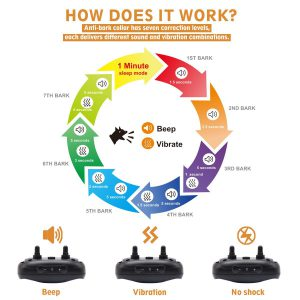 Pop View How Does It Work Chart