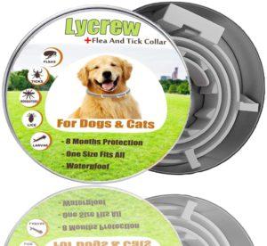 Best Dog Flea Collars - Lycrew Flea Tick Collar