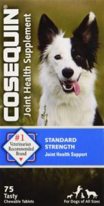 Best Dog Vitamin Supplements - Cosequin Hip and Joint Support
