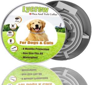 Best Dog Flea Collars - Lycrew Flea Tick Collar r