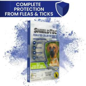 Best Dog Flea Collars - ShieldTec Flea Tick Collar r