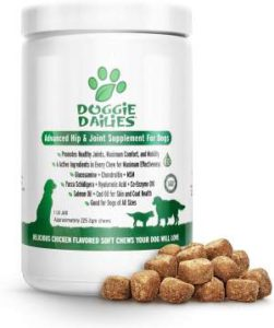 Best Dog Vitamin Supplements - Doggie Dailies Hip and Joint Supplement r