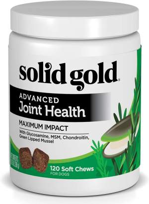 Best Dog Vitamin Supplements - Solid Gold Hip and Joint Support r