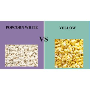 White Vs Yellow Popcorn
