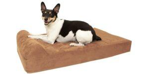 Dog Beds Picture Header
